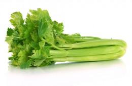 Celer řapíkatý 1ks