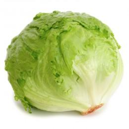 Ledový salát 1ks (cca 350g)
