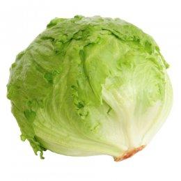 Ledový salát 1ks