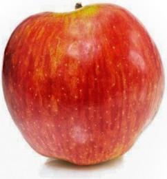 Jablko Rubín 1ks