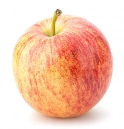 Jablko Royal Gala 1ks