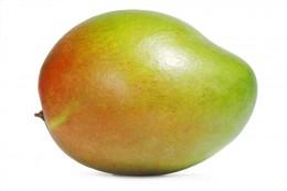 Mango dozrávané na stromě 1ks