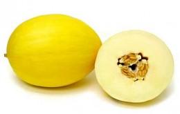 Meloun cukrový žlutý 1ks