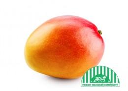 Mango BIO k dozrání 1ks