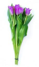 Tulipány fialové vázané 7ks - délka 30 cm