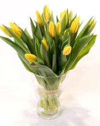 Tulipány žluté vázané 10ks