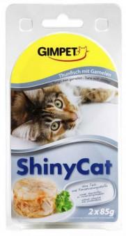 horké mokré tuk kočička