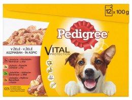 Pedigree Vital Protection kapsičky pro dospělé psy Mix v želé 12 × 100g