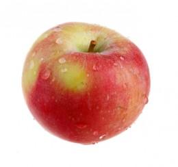 Jablko letní Paula red 1ks