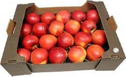 Jablka odr. Gala (od lokálního pěstitele), karton XXL