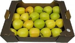 Jablka Golden Delicious (od lokálního pěstitele), karton XXL