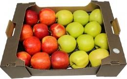 Jablko mix karton odr. Jonagored + Golden del. (od lokálního pěstitele), karton XXL