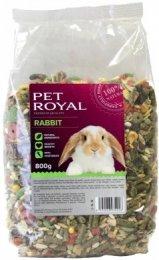 Pet Royal králík