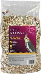 Pet Royal malý papoušek