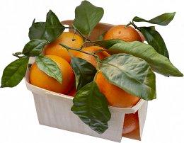 Pomeranče s lístkem (dozrávané na stromě), EKO balení