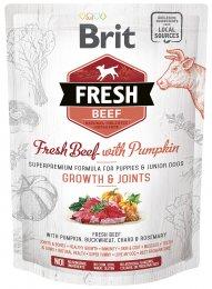 VZOREK: Brit Fresh Beef with Pumpkin Puppy Large 1ks