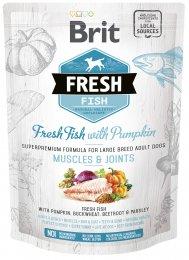 VZOREK: Brit Fresh Fish with Pumpkin Adult Large 1ks