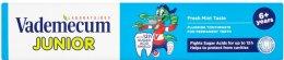 Vademecum Junior zubní pasta pro stálé zuby 6+ Fresh Mint Taste