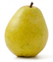 Hruška zelená (odr. Lucas / Boscova lahvice)