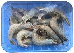 AG Seafood Krevety celé syrové 30/40 (mražené)