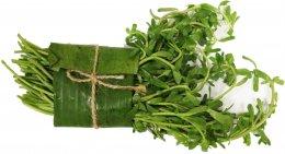 Truskavec (Rau Dang, Bitter leaf), svazek