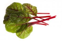 Salát Red chard – lístky červené řepy, vanička
